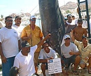 28-Hour Fight Off Cabo San Lucas Yields Massive Marlin