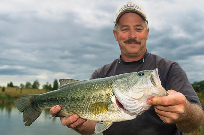 bass, bass fishing, fishing