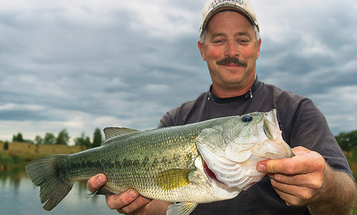 How to Catch Post-Spawn Bass on Ledges