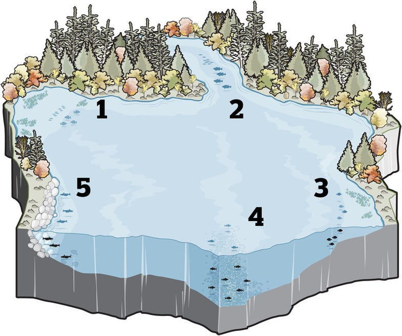 Where to Find Fish When Temperatures Start to Drop