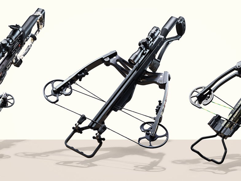 field test crossbow compound bow