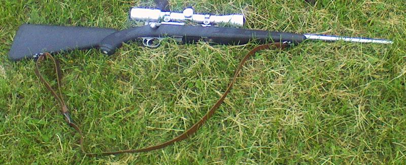 An ideal squirrel hunting rifle setup.