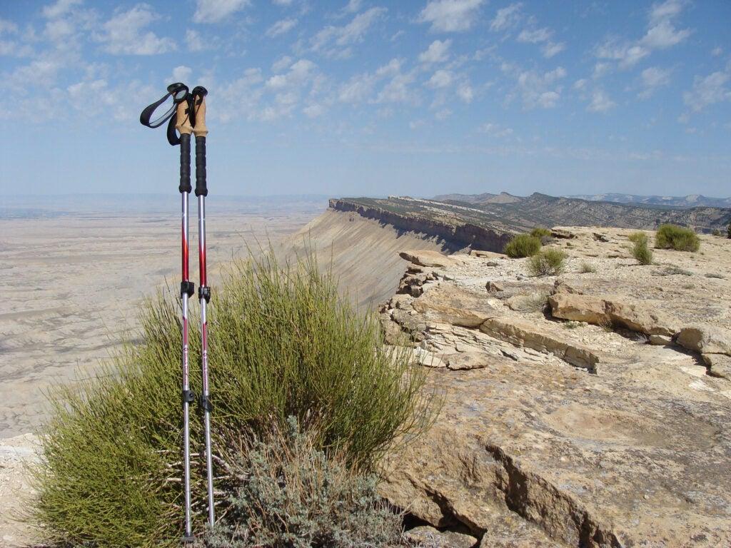 Black Diamond trekking poles, hiking poles