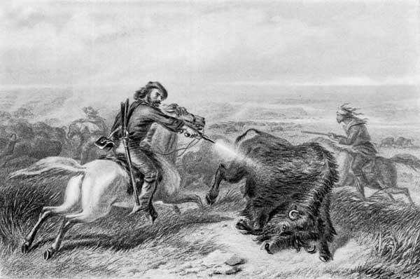 Buffalo: The Greatest Meat Man Has Ever Fed On