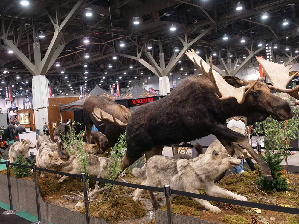 sci convention moose and wolves taxidermy