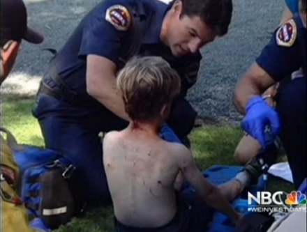 Hunt Is On for Mountain Lion That Attacked Boy in California