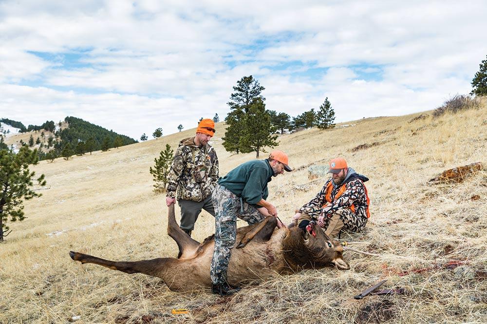 elk hunting durfee hills
