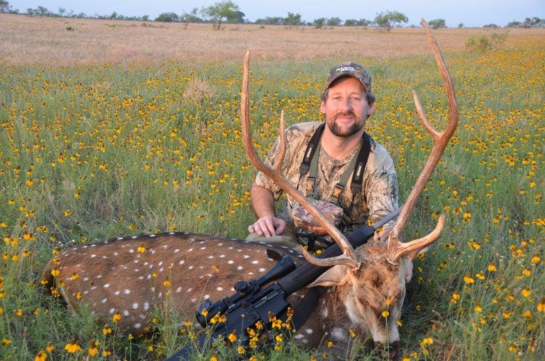 Free-Range Axis Deer: An Underrated Off-Season Hunt