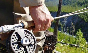 How To Buy A New Trout Fly Rod On Any Budget