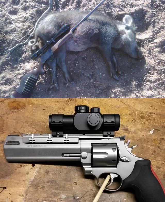 Gunfight Friday: 56x50r vs 41 Magnum