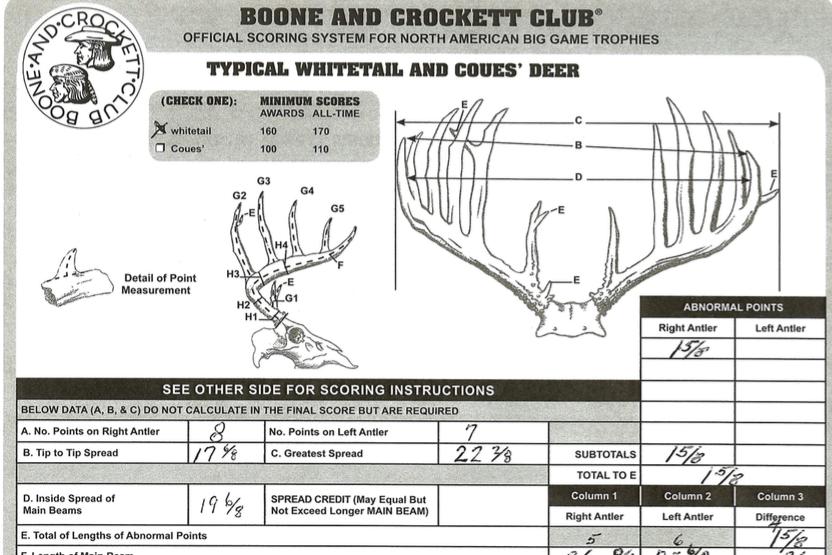 B & C scoring