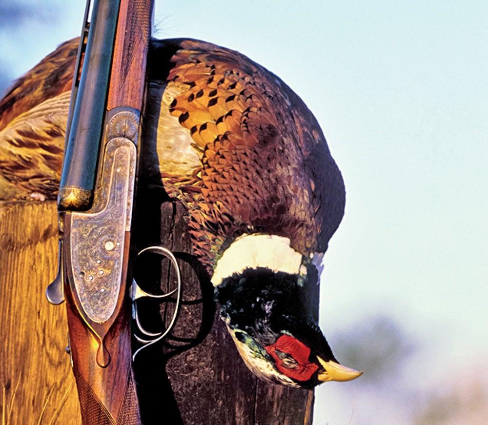 pheasant breast