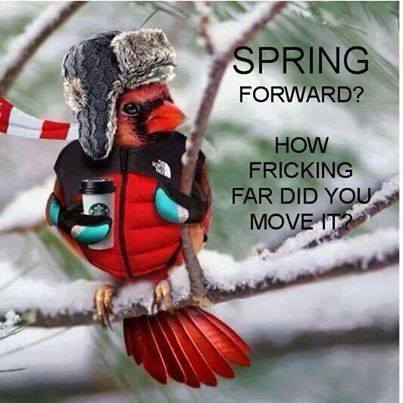 Eternal Spring Hopes