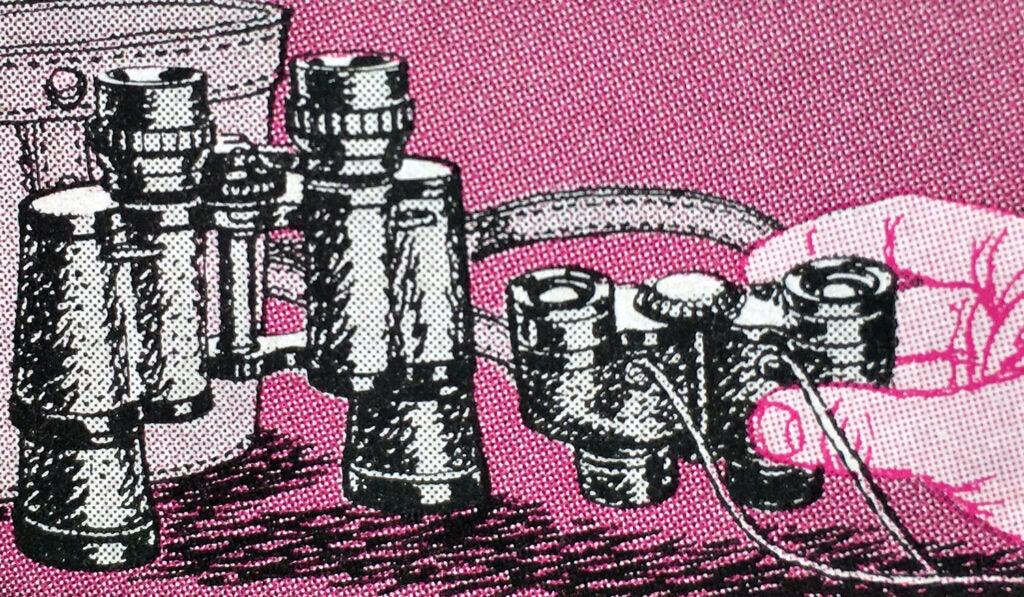 which binoculars to buy