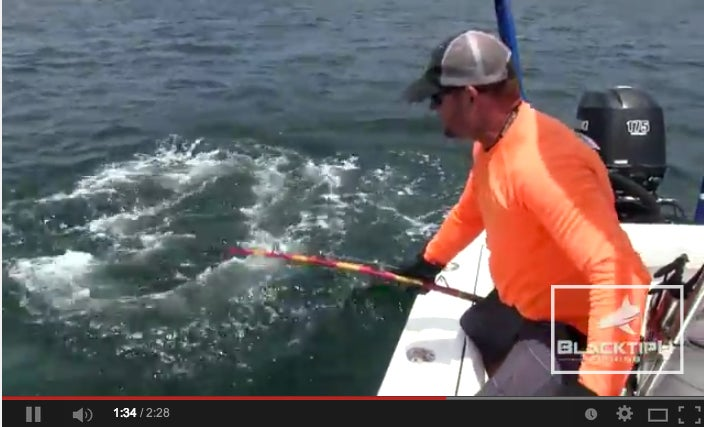 How To Defeat A Massive Bull Shark In Less Than 3 Minutes