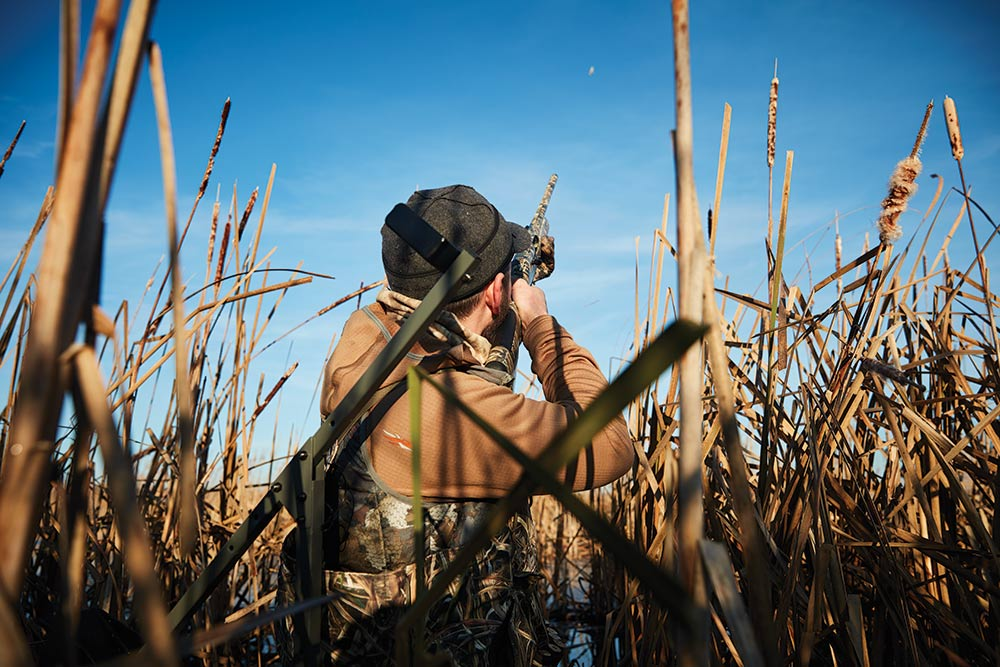 michale r shea taking a shot at ducks