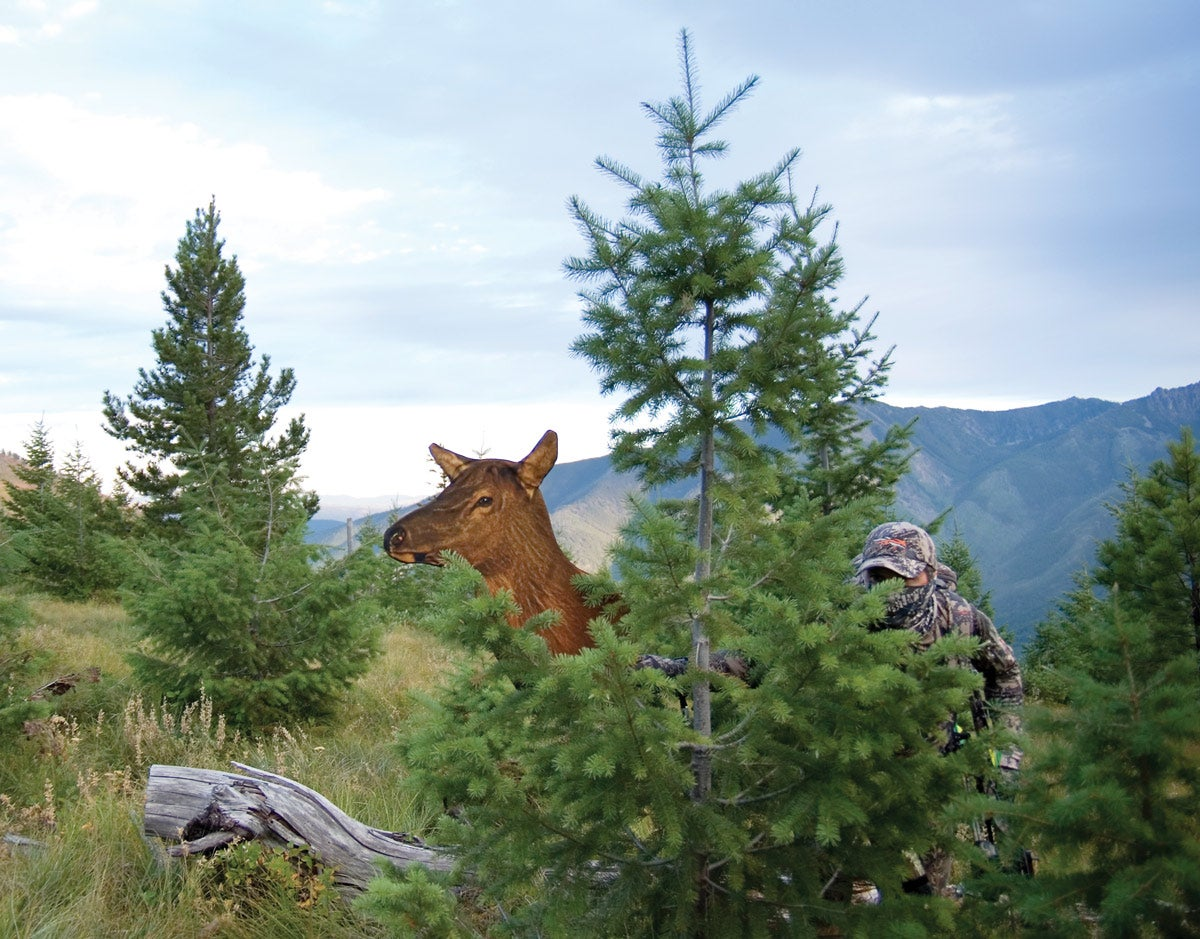 Breakout Bow Season: Decoy Elk