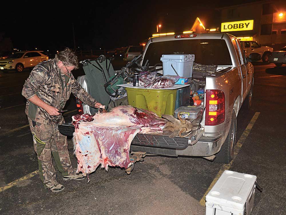 tailgate butchering hunting whitetail