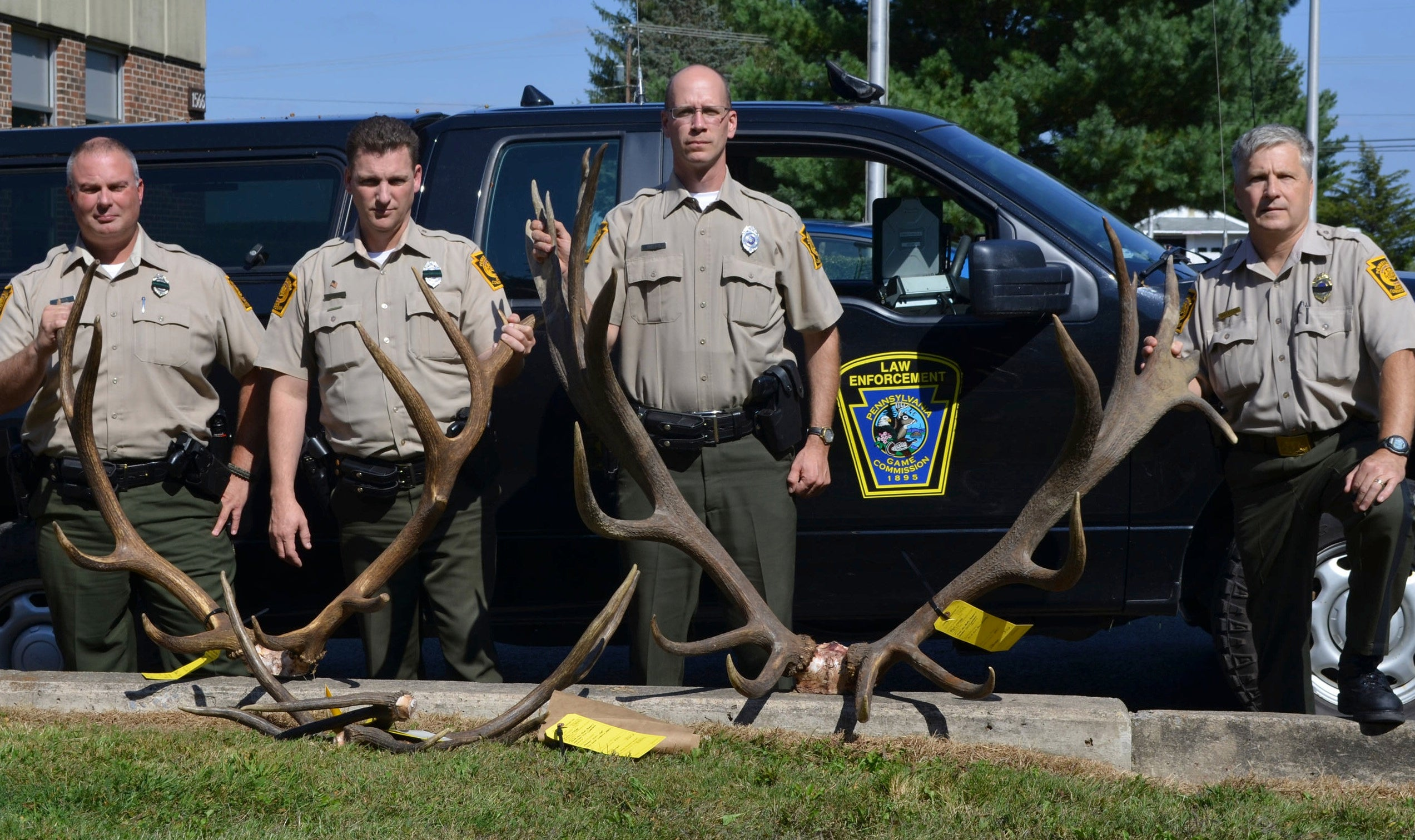 Poacher Who Killed One of Largest Elk in PA History Will Go to Jail