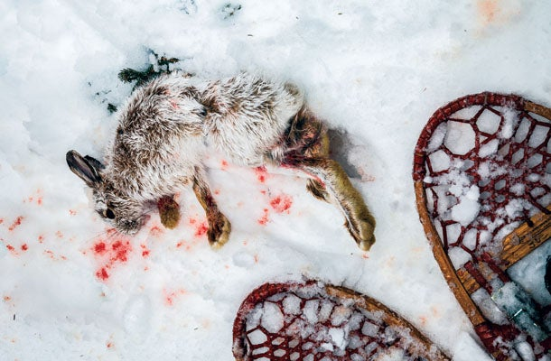 March of the Snowshoes: 4 Days of the Craziest Rabbit Hunting in the World