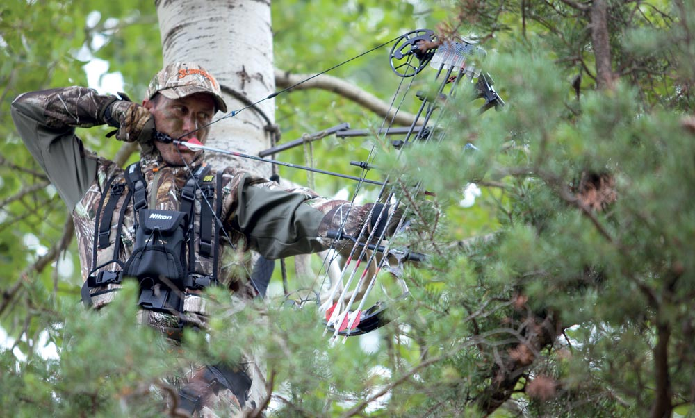 Bowhunting 20-acre woods