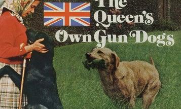 F&S Classics: The Queen's Own Gun Dogs