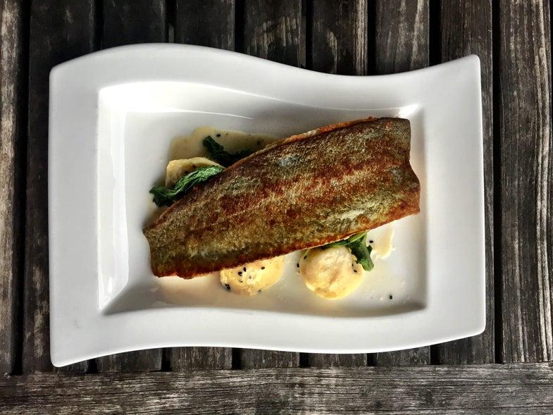 Recipe: Cook Seared Trout Like a Pro