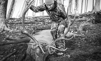 31 D.I.Y. Tips for the Ultimate Elk Hunt