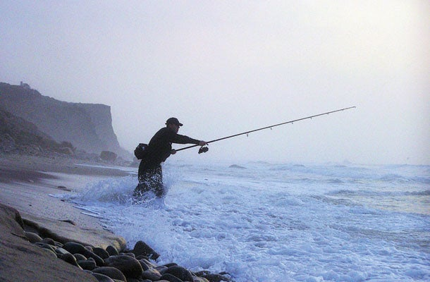 Summer Fishing Adventure: The Striped Bass Haul of Fame