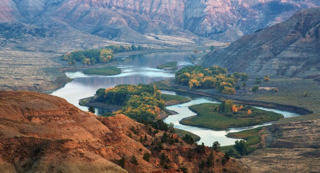 montana missouri river trout