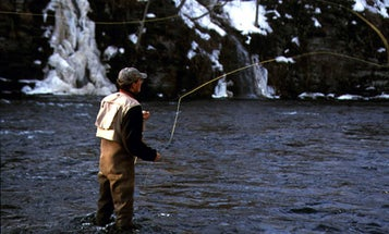 50 Ways to Fool Spring Trout