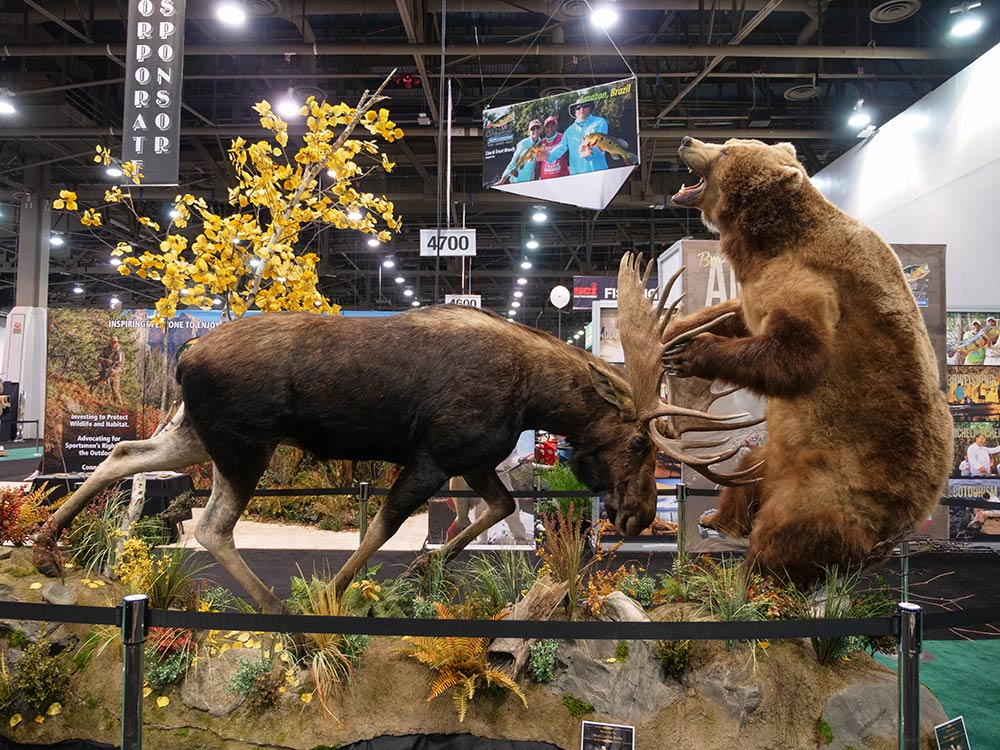 sci convention moose bear taxidermy