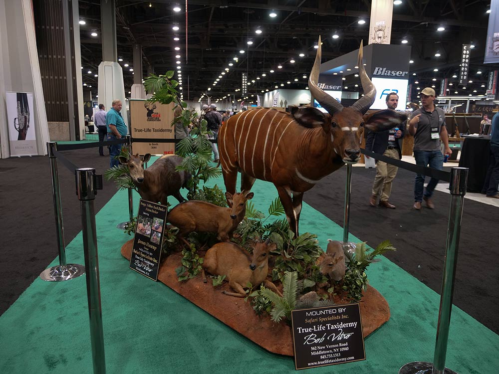 sci convention bongo forest taxidermy