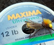 Trout: How Much Does Tippet Size Really Matter?