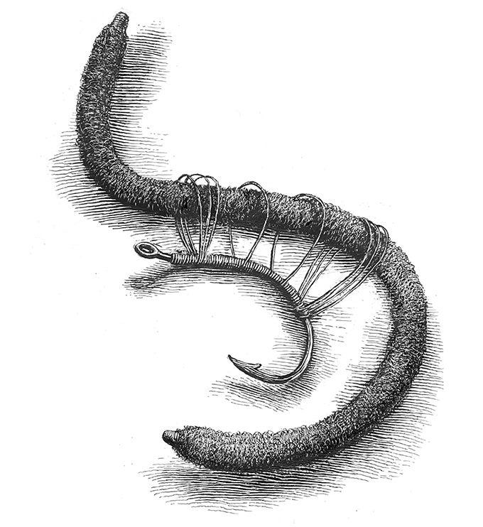 """""""worm,"""