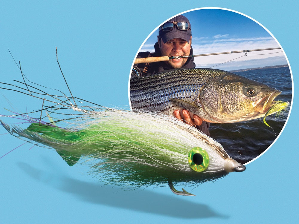Striped bass fly fishing dredge