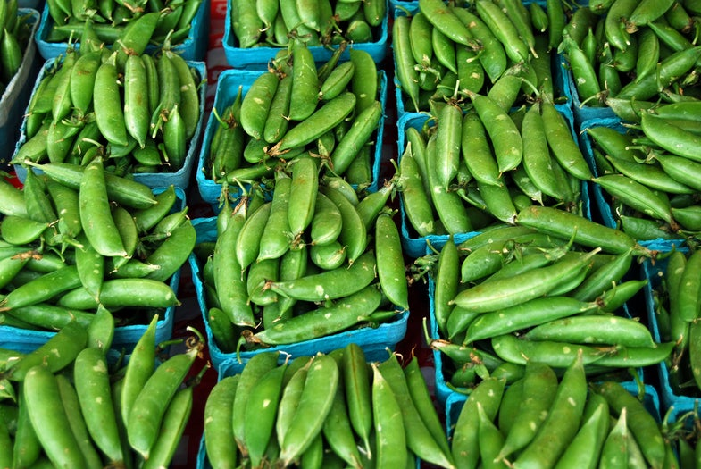 Wild Side Recipe: Charred Sugar Snap Peas