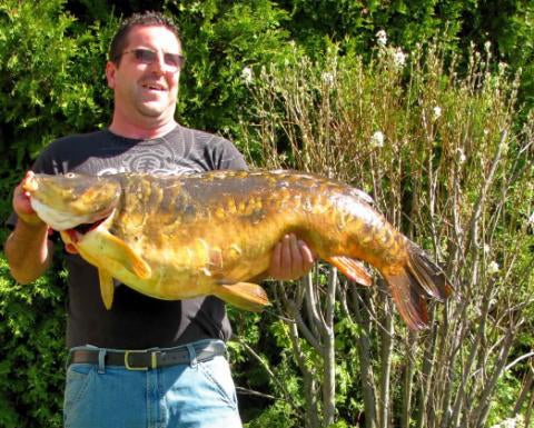 Massachusetts Bowfisherman Breaks 20-Year-Old Record With 46-Pound Carp