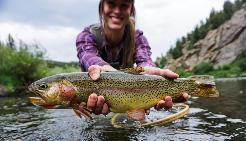 late-summer trout,