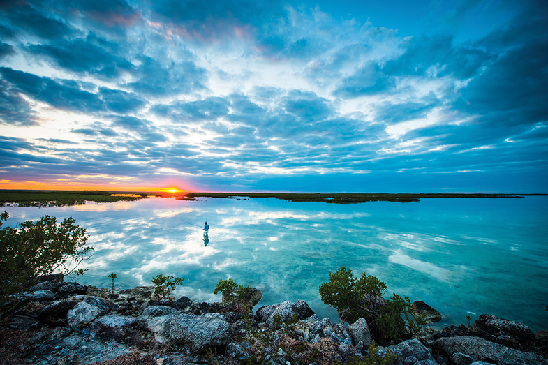 The Bonefish Vacation: A D.I.Y. Stalk on the Flats