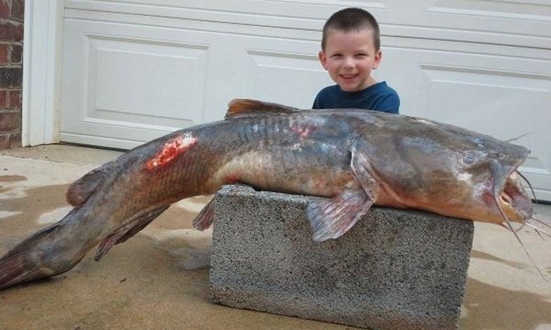 IGFA Certifies Five-Year-Old's World Record Catfish