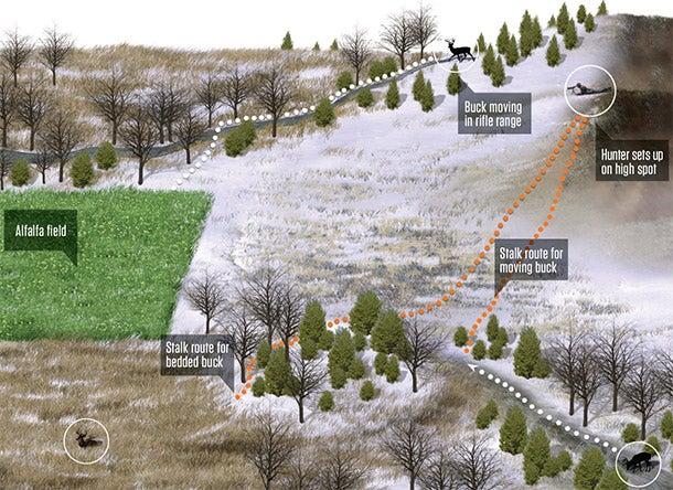 Deer Hunting Tip: Ambush an Open-Country Buck