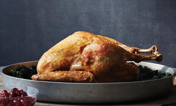 How to Deep Fry Wild Turkey