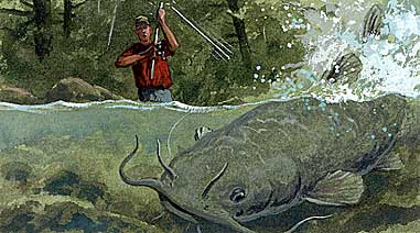How to Fight Big Fish