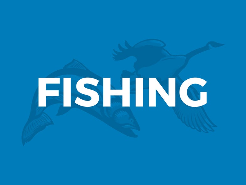 Romano: Midcurrent Sheds Light on Fly Fishing Queries