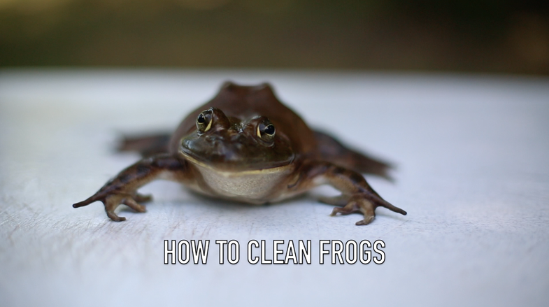 Video: How to Clean Frogs