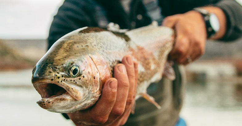 Five August Hunting and Fishing Hotspots