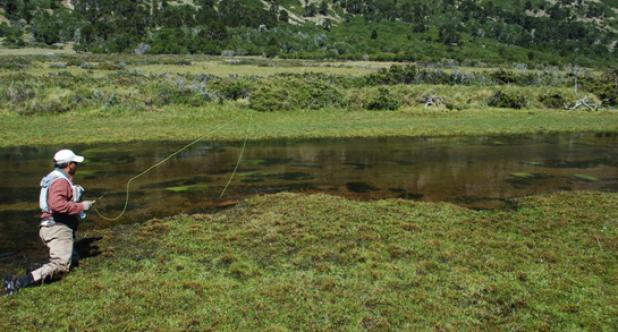 Catch More Trout: Keep a Low Profile