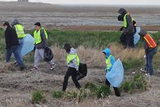 Hero for a Day 2014: Cleaning Up an East Coast Wetland