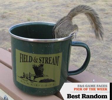httpswww.fieldandstream.comsitesfieldandstream.comfilesimport2014importImage2008legacy41891870.jpg